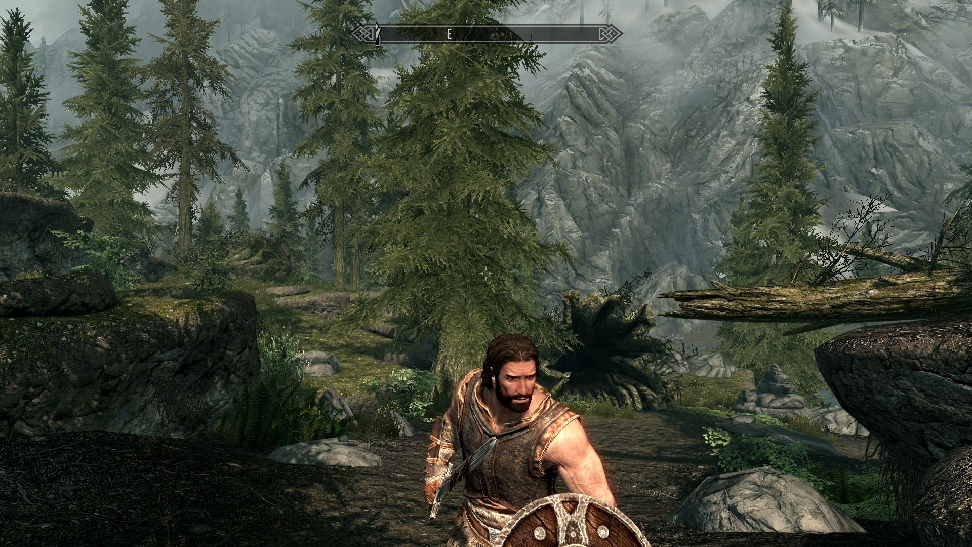 My favorite Skyrim mods